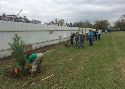 CTUFC Citizen Forester Planting trees