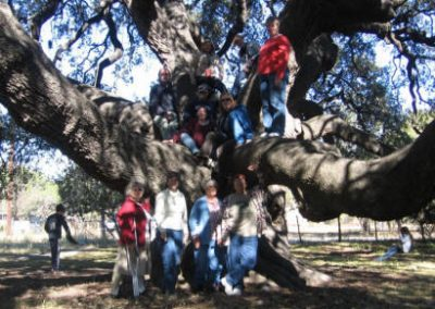 Big Tree trip