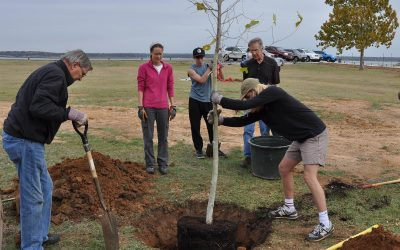 Citizen Foresters Plant Trees at Lake Grapevine