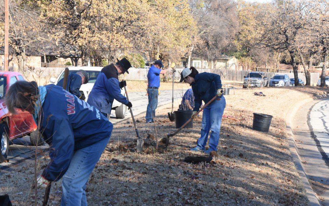 Citizen Foresters Plant Trees in Arlington